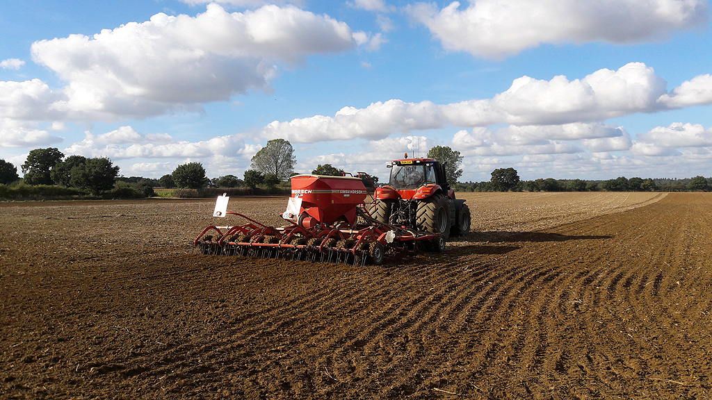 Drilling plots at Barton Black grass Focus Site