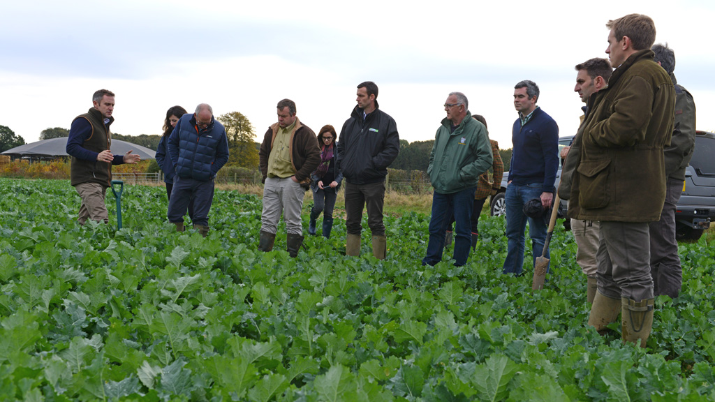 iOSR grower group at Sutton Estates in Lincolnshire - Nov 2016
