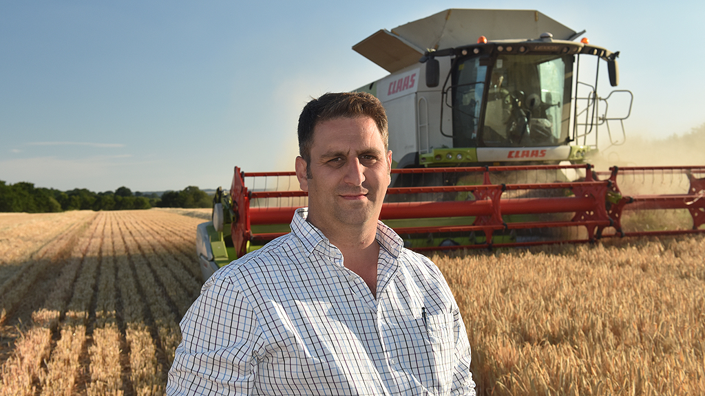 Joe Dilibero combining winter barley at Sutton Estates