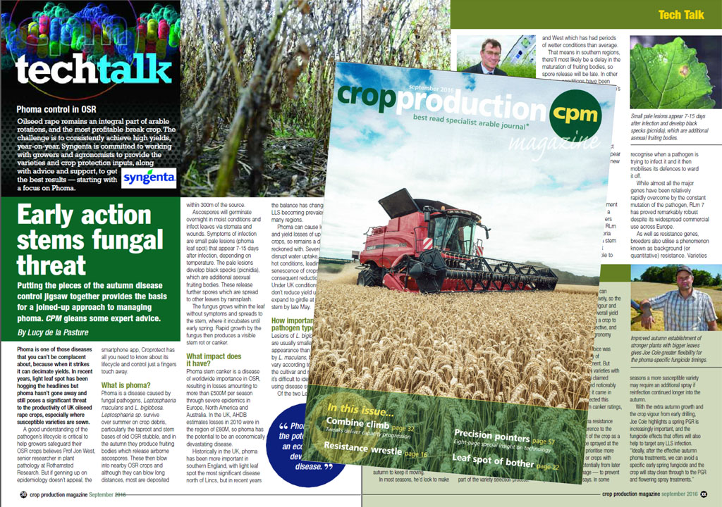 CPM Tech Talk page - Phoma