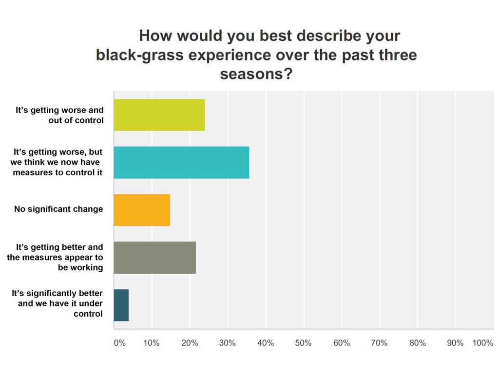 Syngenta black-grass survey results - growers experience