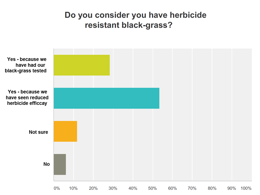 Syngenta black-grass survey results - herbicide resistance