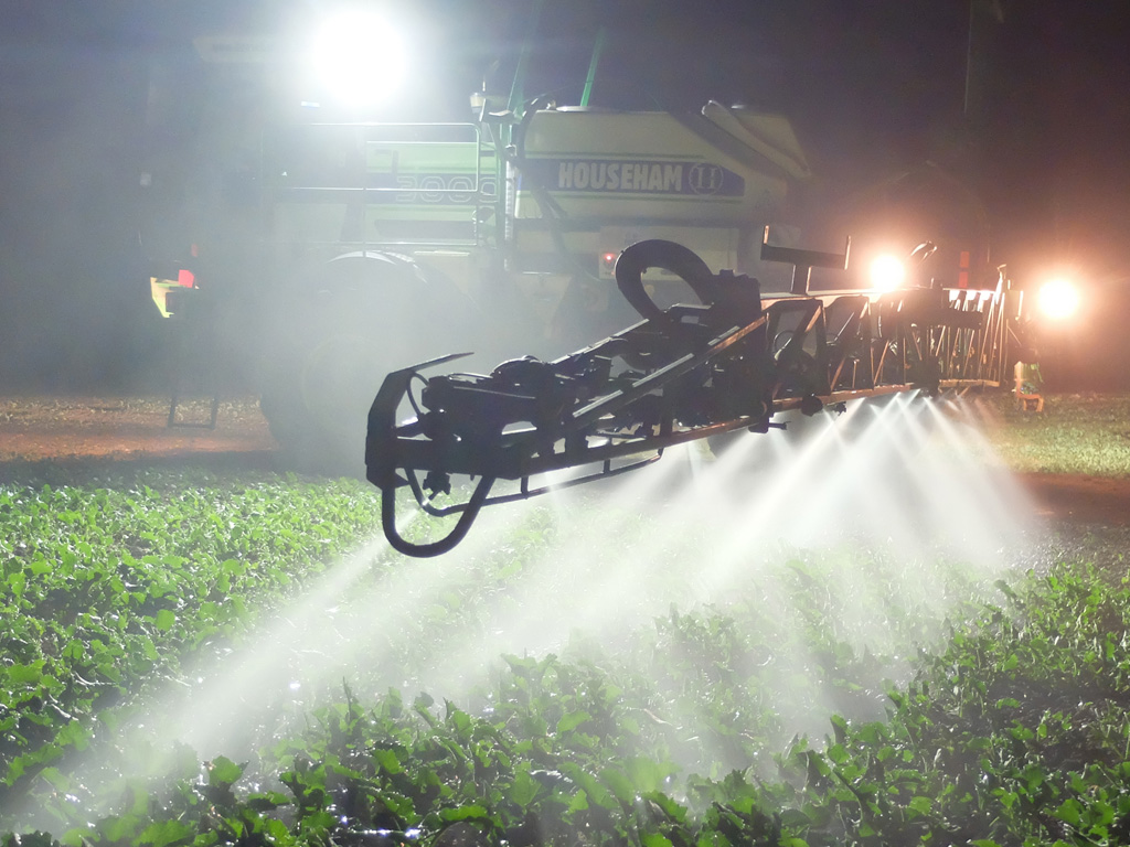 Trial spraying OSR at night to better target Flea Beetle activity