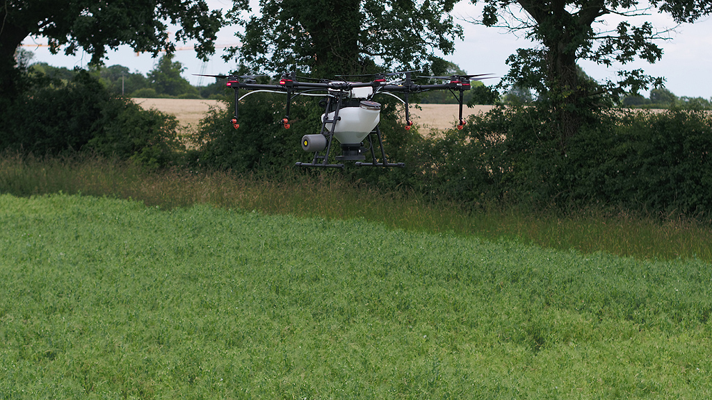 Crop Angel drone sowing green headland mix in peas