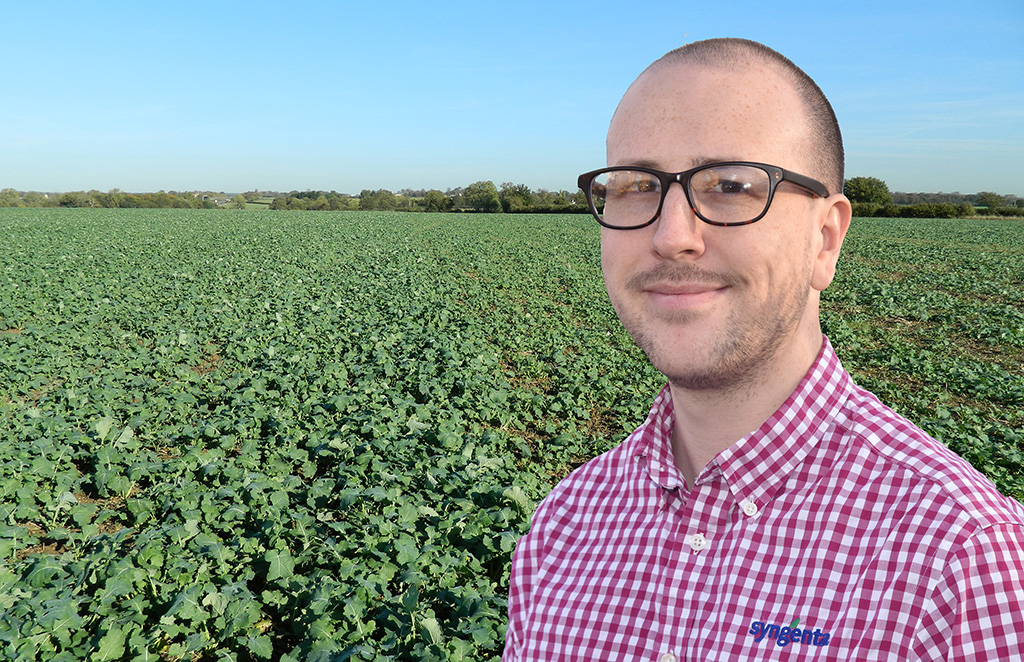Focussing on establishment could help OSR crops grow away from initial CSFB attacks advocates Dr Max Newbert