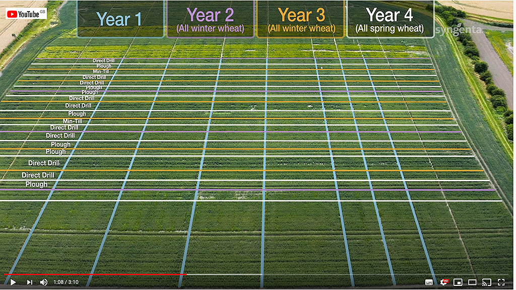 Barton cultivation matrix from grassweed diaries video