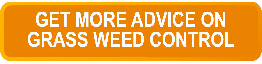 Grass weed advice button