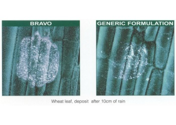 BRAVO leaf retention