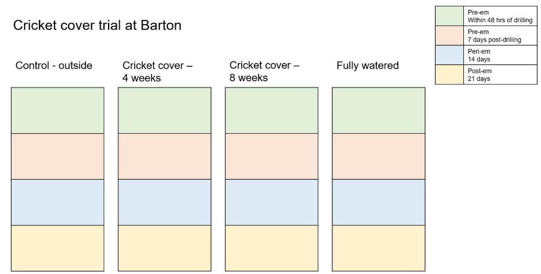 Cricket cover trial at Barton