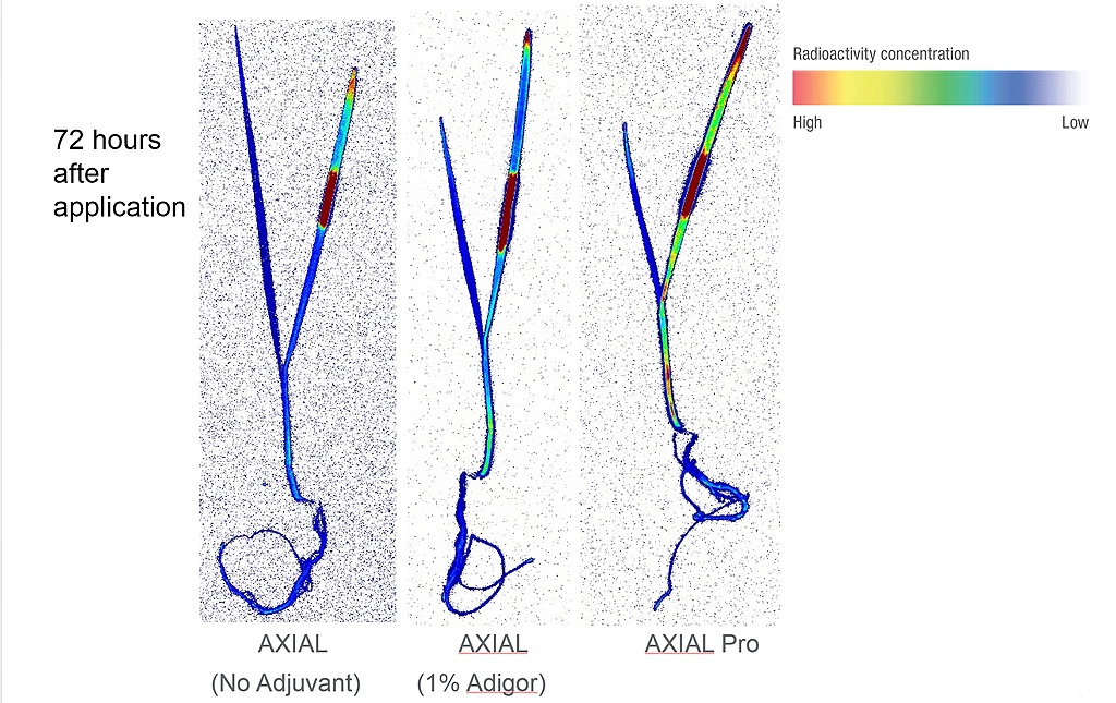 Axial Pro faster uptake and translocation