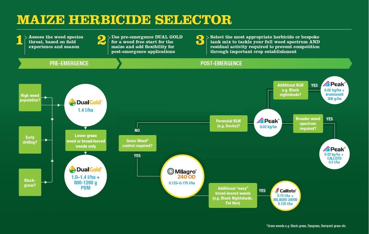 Maize Herbicide Selector