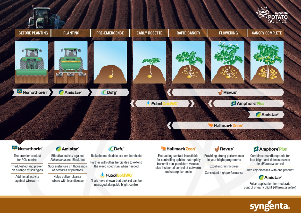 Syngenta_potato_product_timeline_2020
