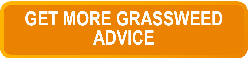 Get more grassweed advice