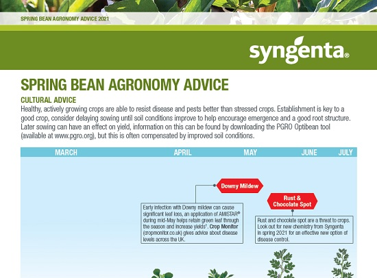 Spring Bean Agronomy Advice 2021