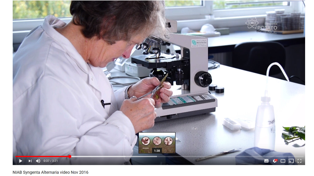Dr Jane Thomas with NIAB Alternaria video