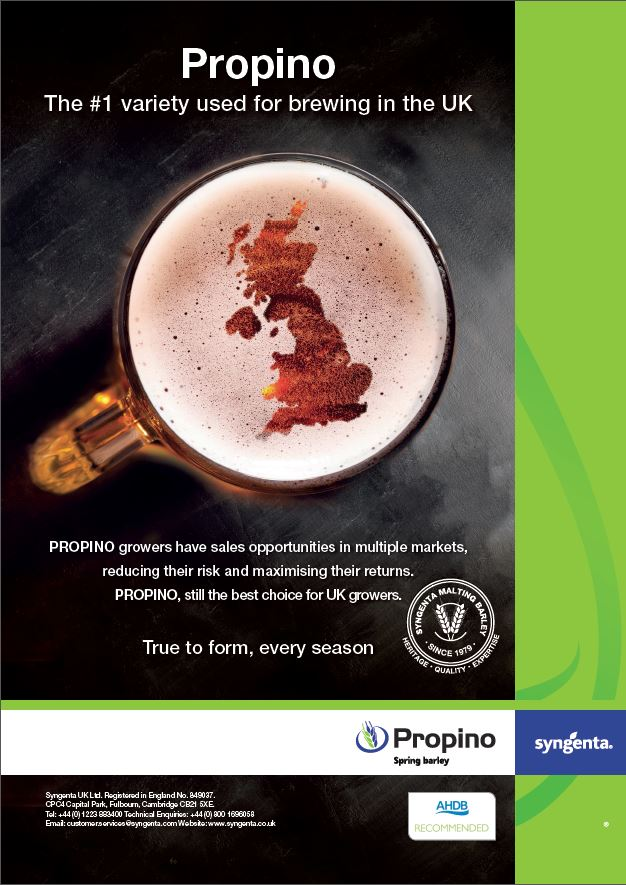 Propino Advert