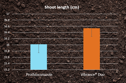 Shoot length - prothioconazole vs Vibrance Duo