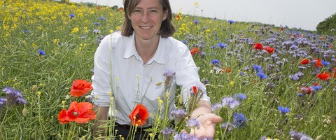 Belinda Bailey with annual wildflowers