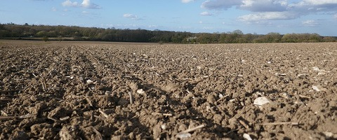 Spring cropping seedbed