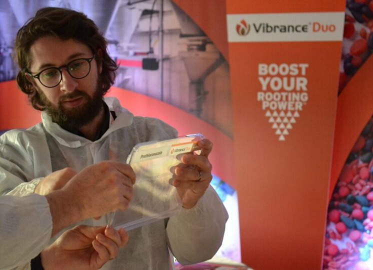 Learn more about VIBRANCE® DUO