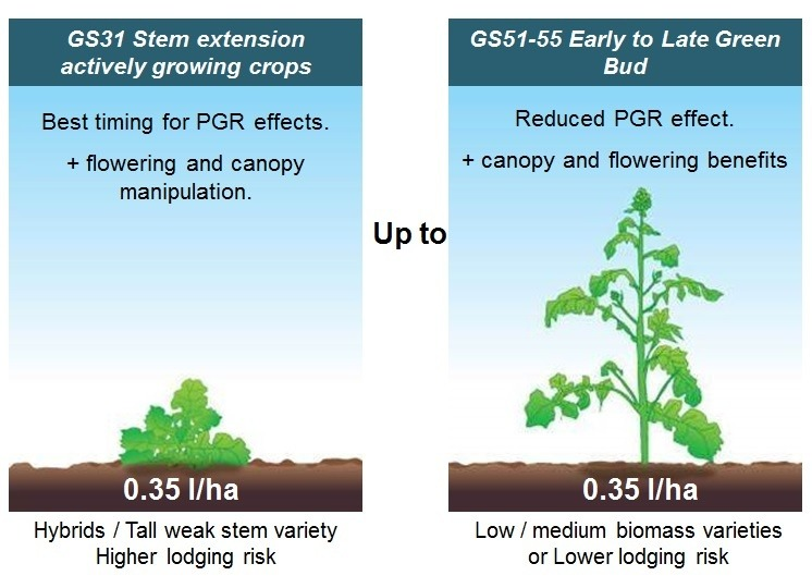 TOPREX OSR PGR timing