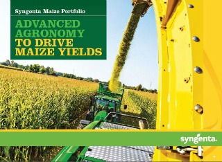 Maize agronomy brochure