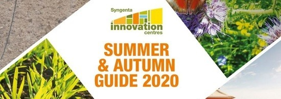 Summer and Autumn Guide 2020
