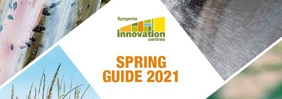 Spring Guide 2021