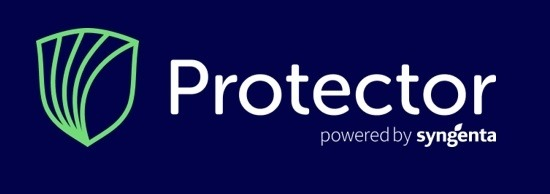Protector banner