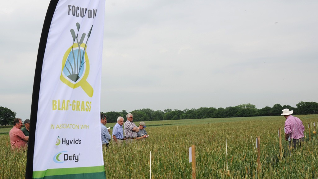 Black-grass Focus Week Oxford Innovation Centre