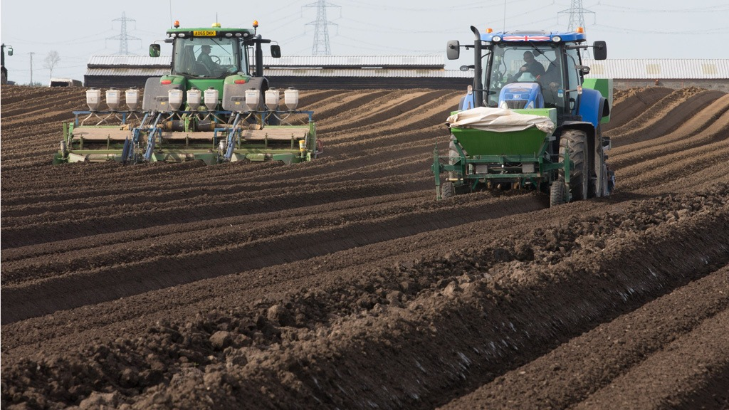 Potato seedbed preparation and planting