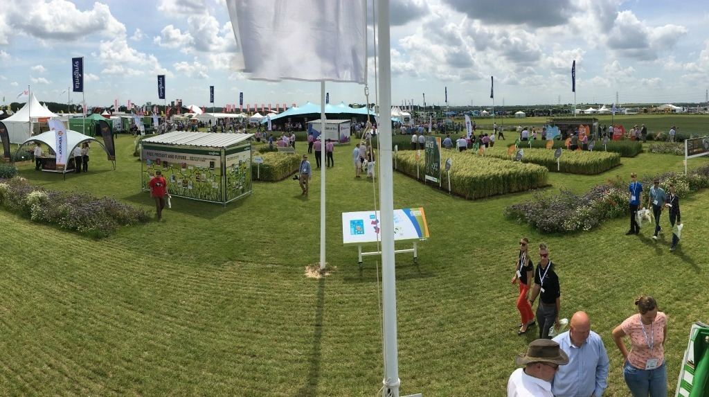 Cereals stand panorama