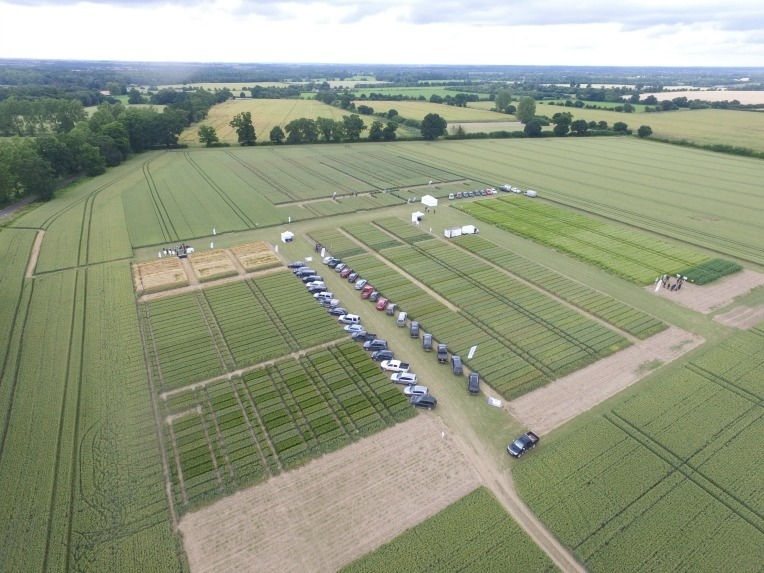 Rougham Open Day