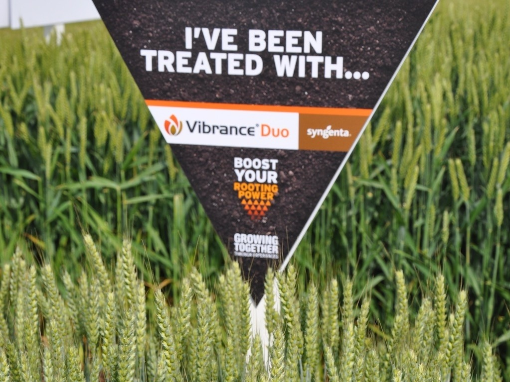 Vibrance Duo treated sign