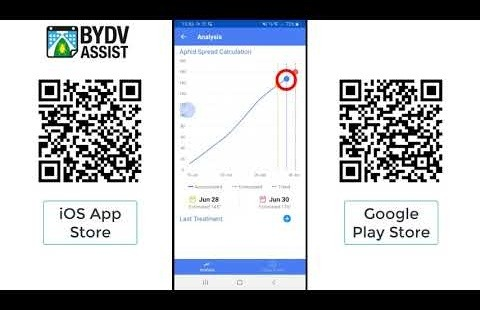 How to use BYDV Assist App version 2.0