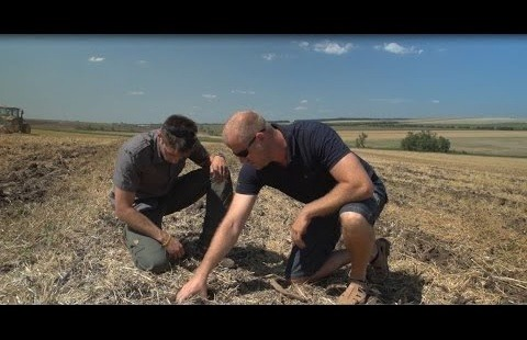 CONTIVO: a productive and sustainable cropping system in Hungary