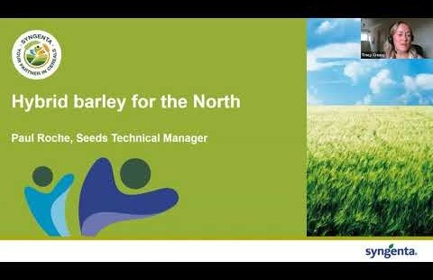 Varieties North Virtual Meeting 2020