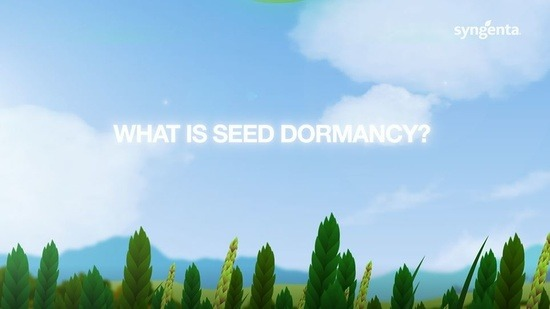 dormancy_thumbnail.jpg